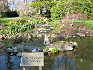 Halifax Public Gardens in May fountain 1977