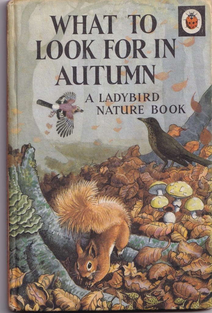 cover of 'What to Look For in Autumn' Ladybird book