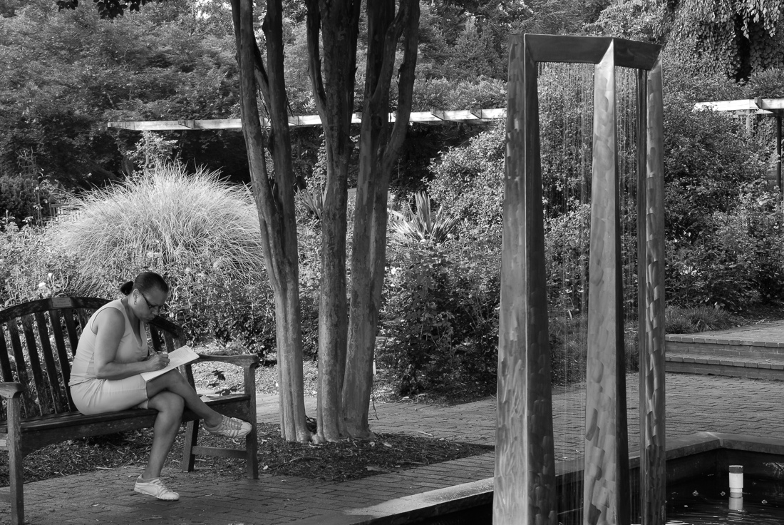 A quiet moment in the rose garden at Brookside Gardens in Wheaton, Maryland