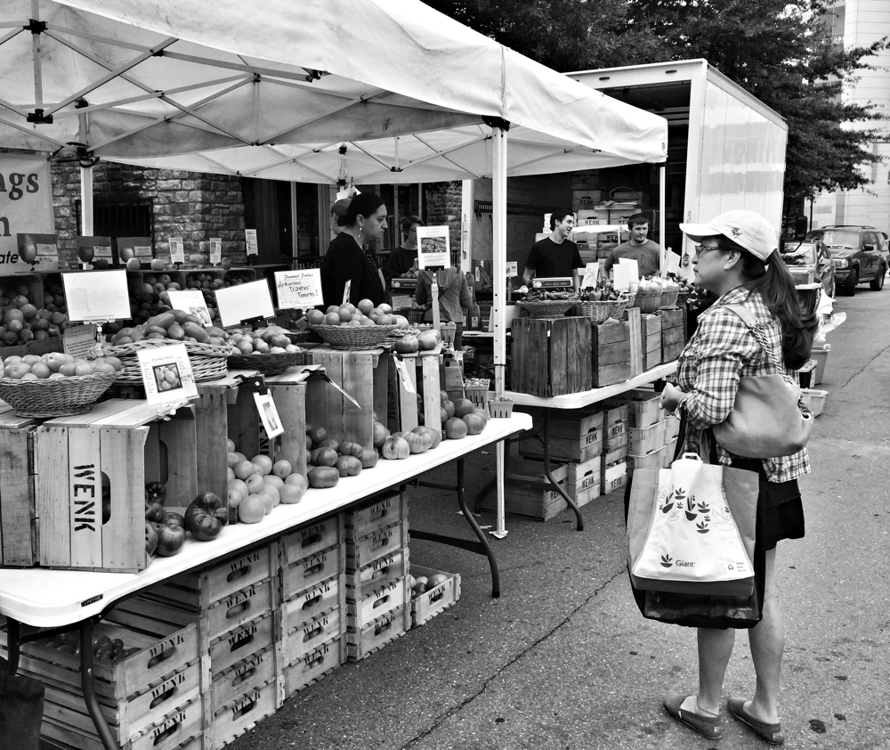 Shopping for fruit and veg at the farmers market in Silver Spring, Maryland