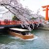 【花見】京都の無料でも楽しめる、おすすめ花見スポット7選〜2018年度版〜