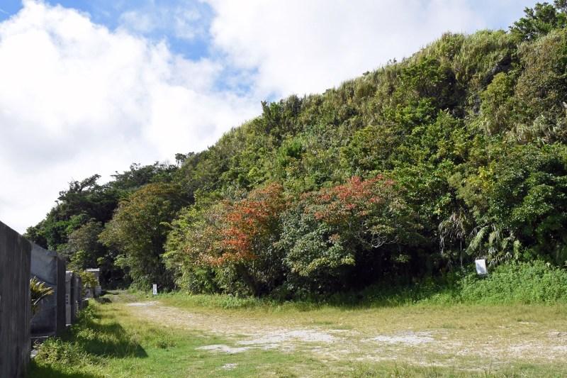 Hacksaw Ridge33