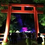 世界遺産と光のコラボが幻想的!下鴨神社 紀の森の光の祭レポ