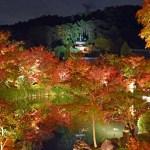 【紅葉】永観堂(禅林寺)モミジのライトアップに行って来ました!〜京都東山〜