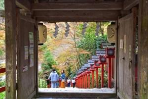 【紅葉】水の神様を祀る貴船神社、朱色の灯篭と紅葉が神秘的!〜京都洛北〜