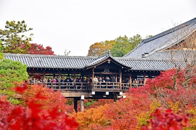 【紅葉】東福寺に行きました。通天橋庭園のモミジは圧巻!〜京都東山〜