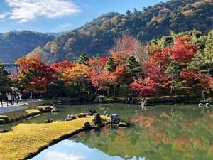 【紅葉】嵐山の特別名勝、天龍寺の庭園は紅葉の美しさも格別!