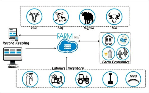 Digital dairy farming setup