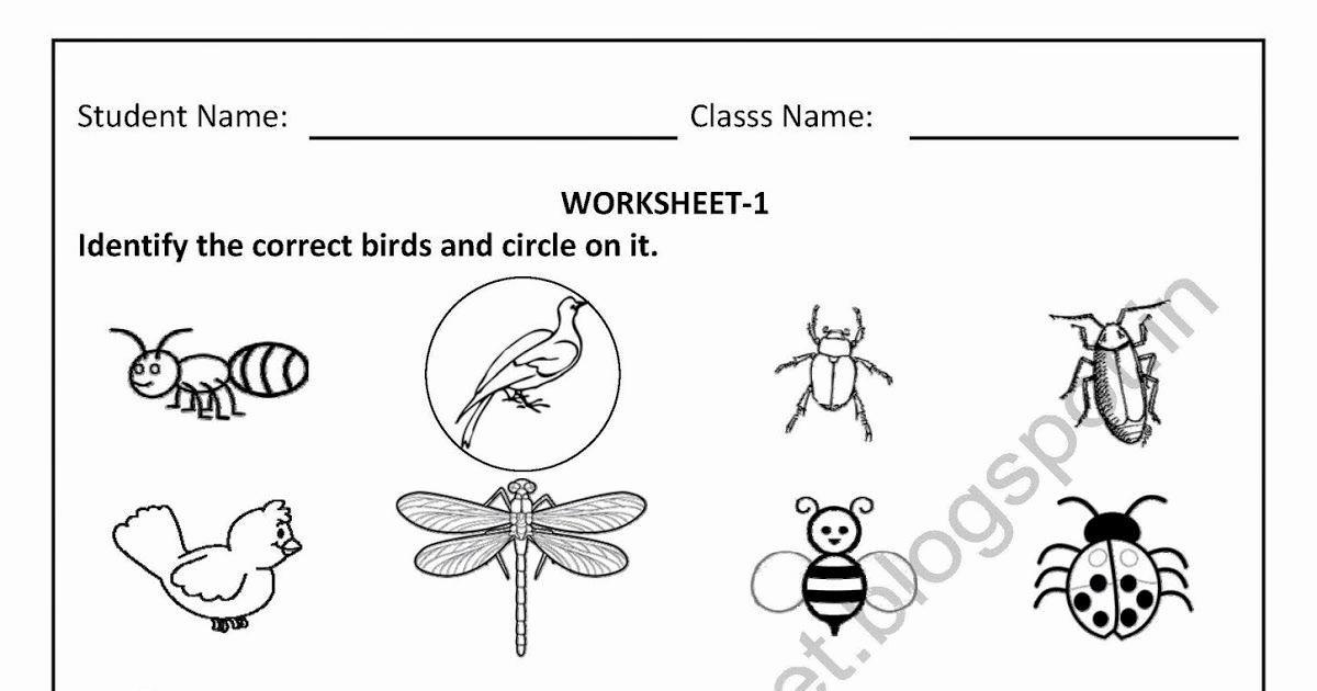 Preschool Worksheets Evs 10