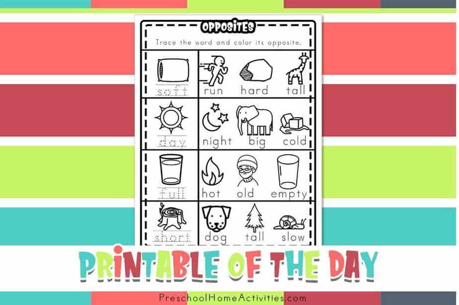 Preschool Opposites Printable Worksheets