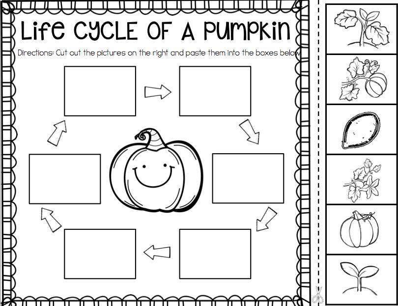 Preschool Worksheet Science