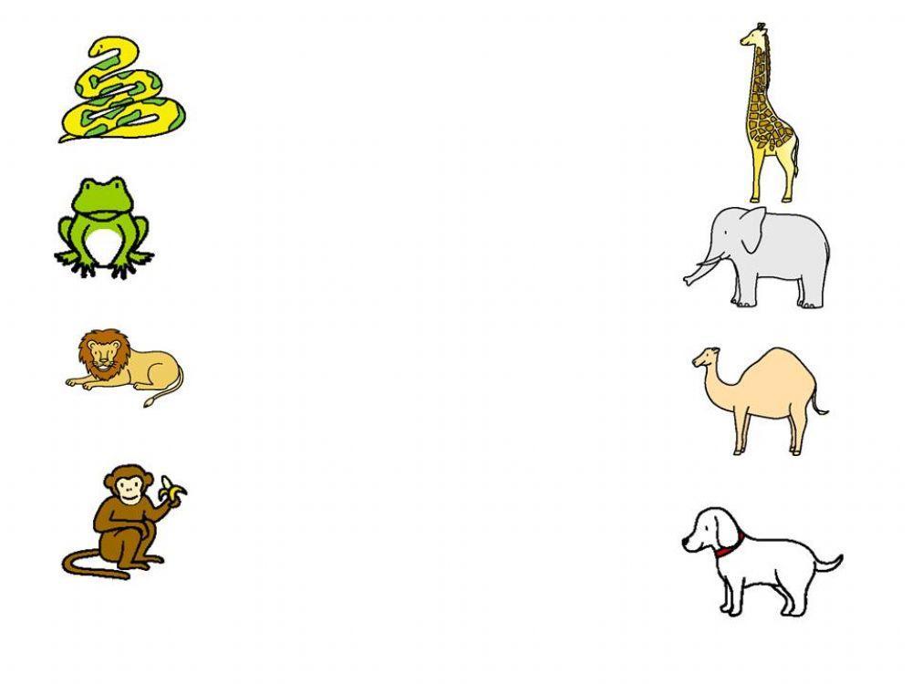 English Worksheets Zoo Animals 5