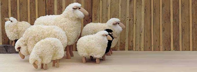 sheep by hanns-peter krafft