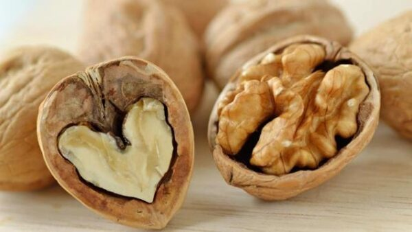 Properties Of Walnuts