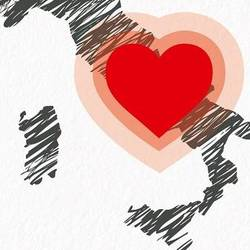 cuore area sisma