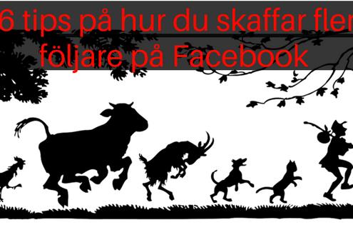 Fler följare Facebook