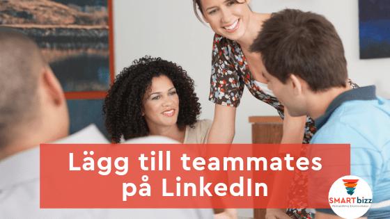 LinkedIn teammates