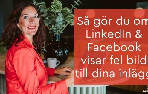 LinkedIn & Facebook visar fel bild till inlägg