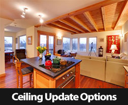 Ceiling Update Options