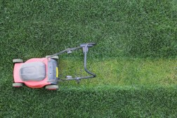Four Handy Tips for Managing Your Lawn After the Spring Rains Have Arrived