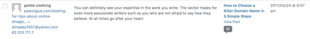 WordPress - Akismet Spam Plugin