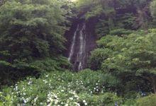 別府 白糸の滝