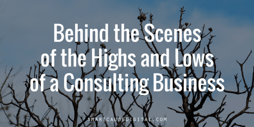 Behind the Scenes of the Highs an Lows of a Consulting Business