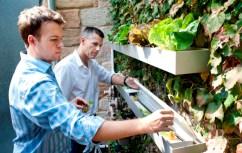 Urban Farming discussion
