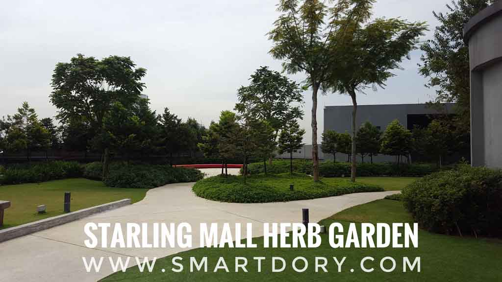Starling Mall Fresh Green Lung Damansara Uptown_Herb Garden