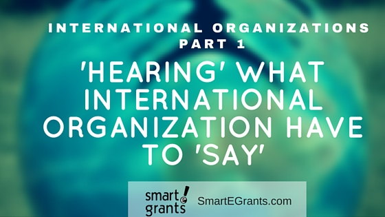 Hearing what International Organizations Have to Say