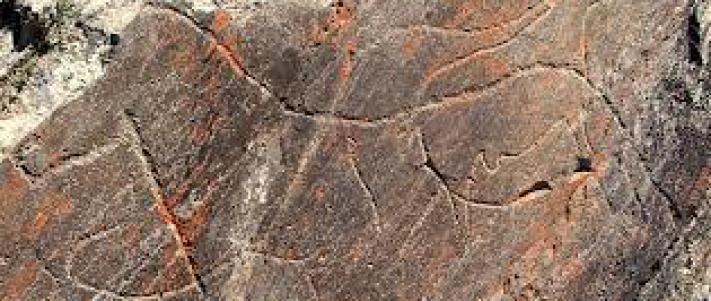 arte rupestre do vale do coa 1 3 gallery
