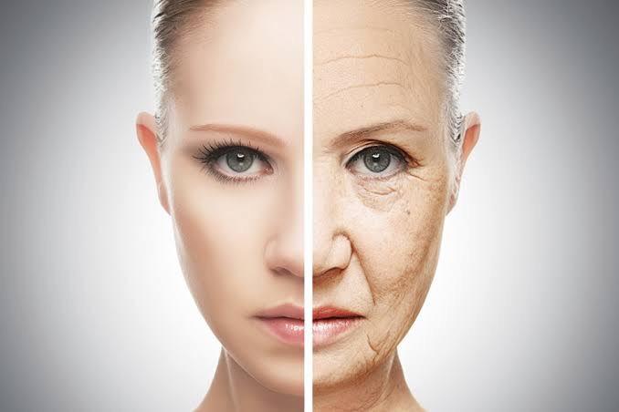 Não podemos enganar o envelhecimento e a morte, Indica Estudo