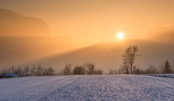 """""""Fog"""" by Carl Sandburg :  Summary and Questions"""