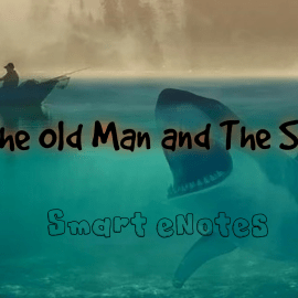 The Old Man And The Sea : Summary, Themes, Character Analysis and Question Answers