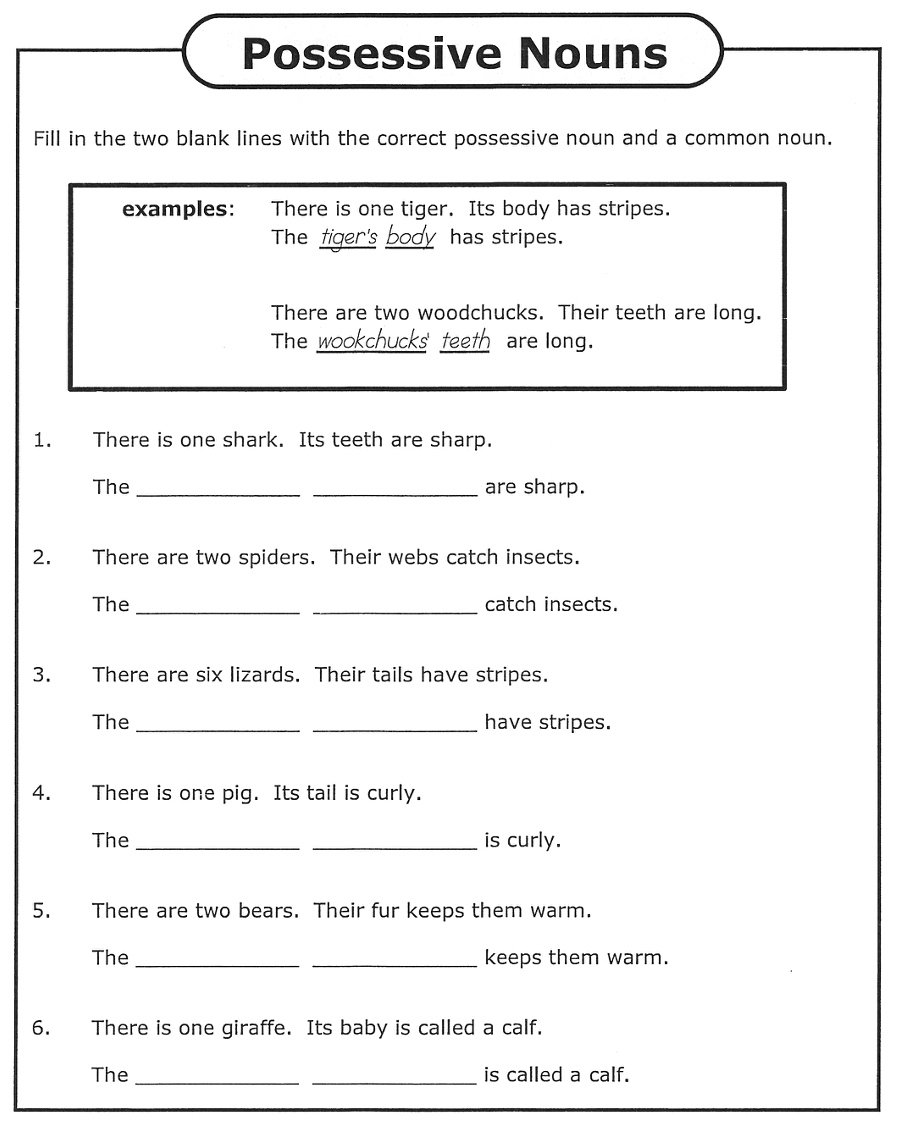 Possessive Pronouns - Rules, Examples and Worksheets 3