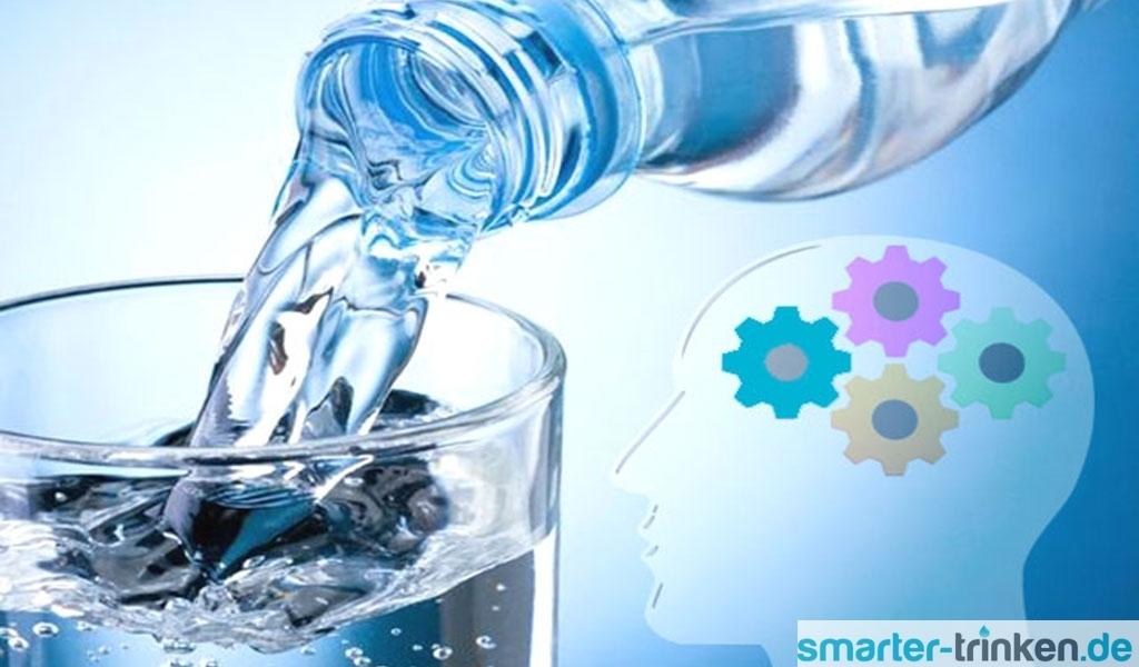 Wasser für das Gehirn