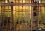 bitcoin-prison
