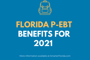 """Florida P-EBT Balance and Login"""