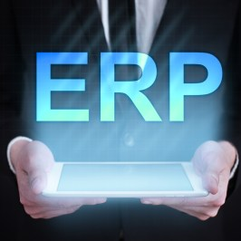 What is ERP and How does it work?