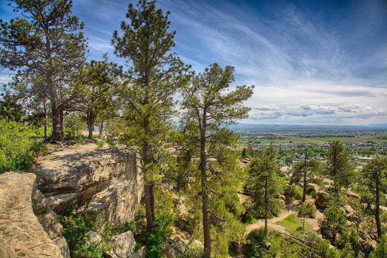Montana Billings K5D20F