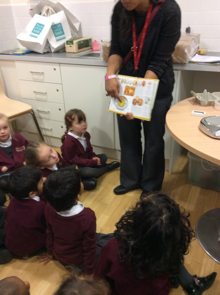 Learning about the main parts of the egg.