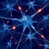 neurons-firing-350
