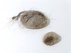 horse hair stones2