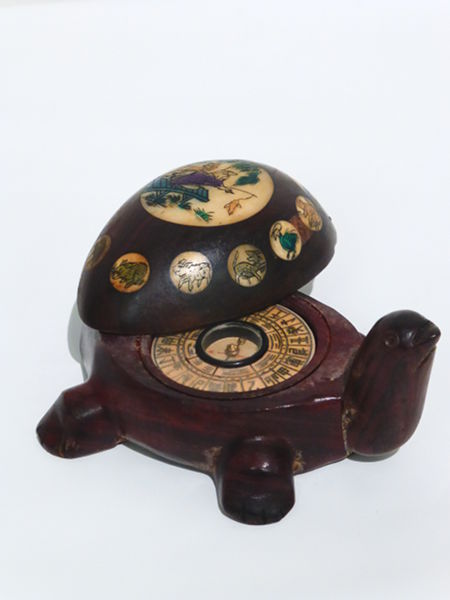 Turtle Compass