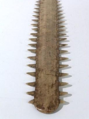 Swordfish Sword