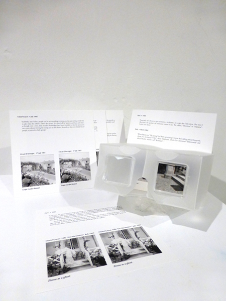 Stereoscope And Lartigue Stereo Cards Set