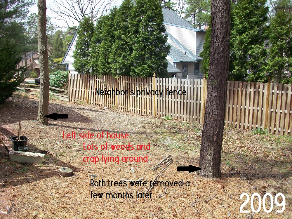Smart Girls DIY- 2009 left side yard