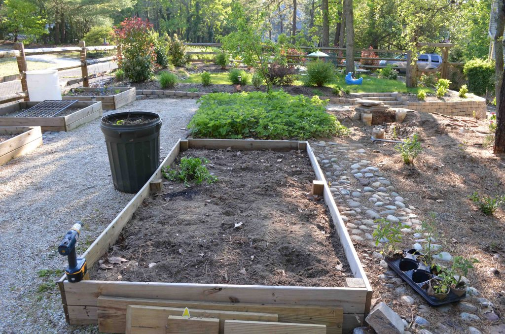View of raised garden beds from in front of the shed