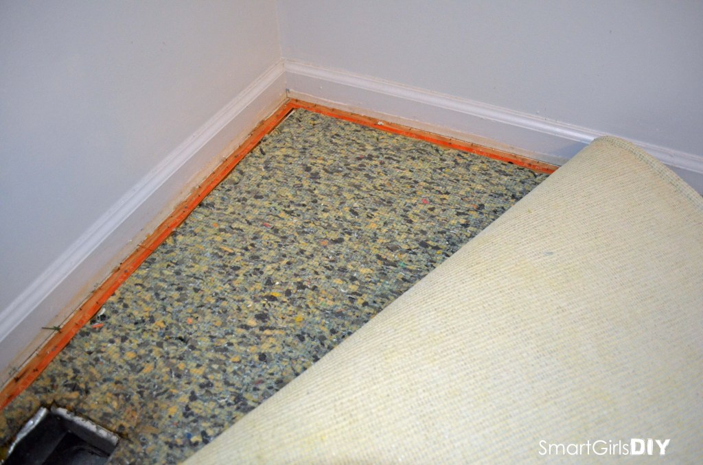 Start peeling carpet back