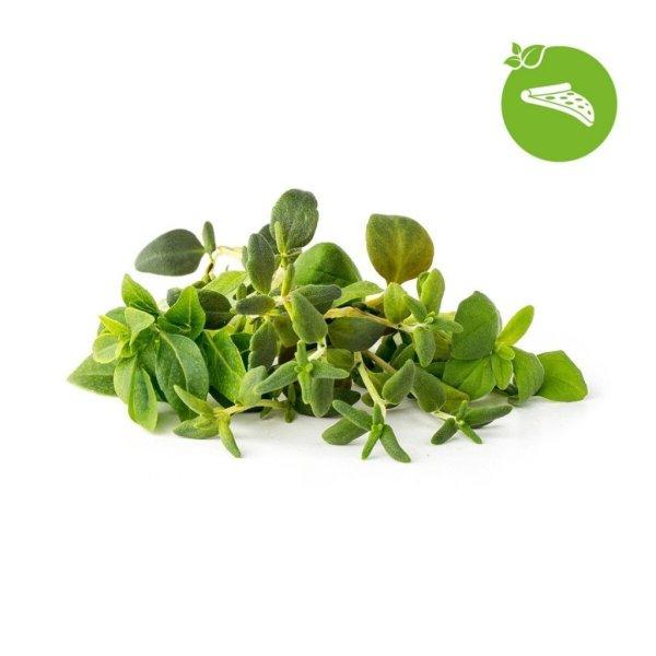Click and Grow Smart Garden Refill 9-pak - Italiensk krydderi Mix